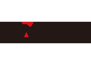 CAMP873